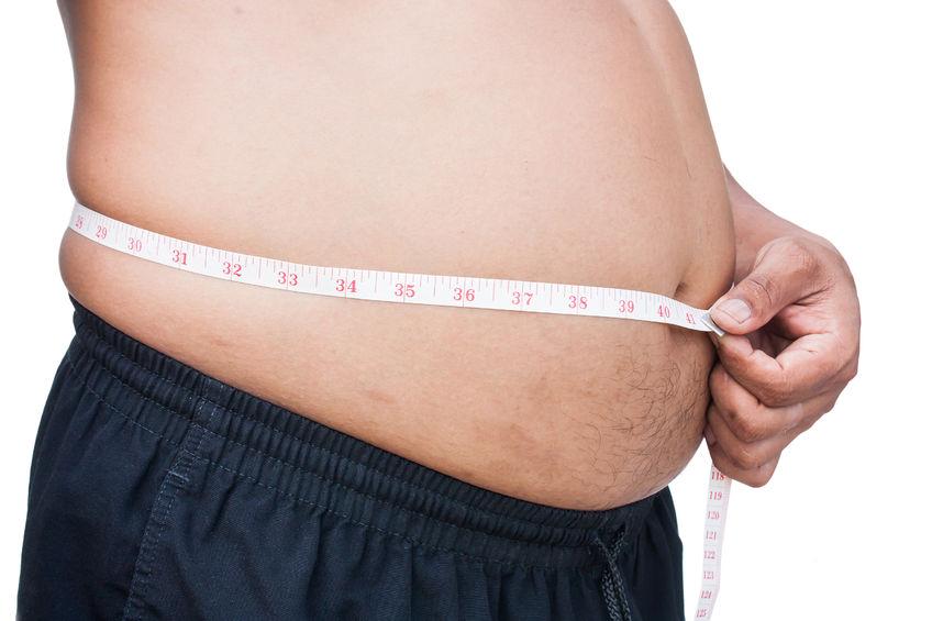 稽古で体脂肪が減る!?